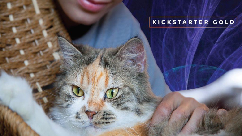 kickagency-kickstarterpolska-musicforcats-kickstartergold