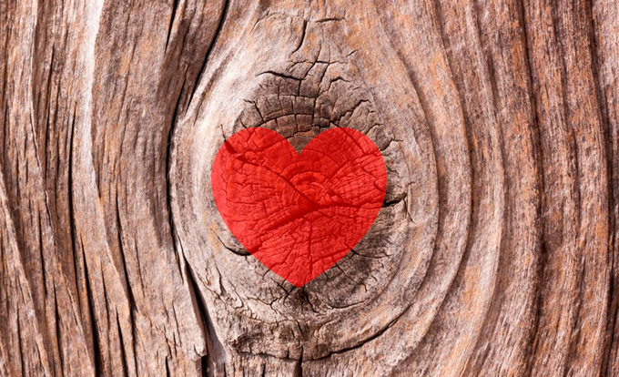 we-love-wood