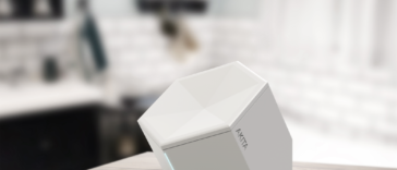 akita-kickstarterpl-kick-agency